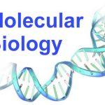 hóa chất sinh học phân tử
