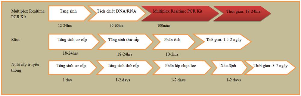Quy trình thao tác với Kit KogeneBiotech Multiplex qPCR