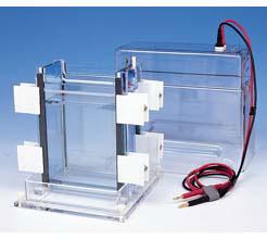 Máy điện di đứng 2 mặt model DSG