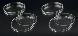 đĩa petri nhựa polystyrene tiệt trùng 1