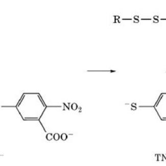 55′-Dithiobis2-nitrobenzoic-acid-omcn9idk3bgc9xqw41d1prz9f5dxvirwce4kbdc73m