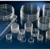 Đĩa nuôi cấy tế bào