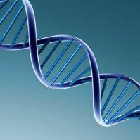 Hóa chất sinh học phân tử, molecular biology