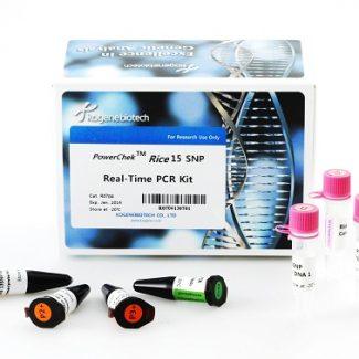 kogenebiotech-1-nijrb6vwerw8wi9y5x948w2rnw109sw3hamrteubjm